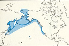 Pelagic Cormorant map