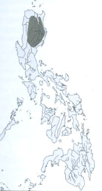 Luzon Scops-Owl map