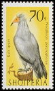 Cl: Egyptian Vulture (Neophron percnopterus) <<Kali qyqes>>  SG 1089 (1966) 275 [3/6]
