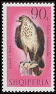 Cl: Long-legged Buzzard (Buteo rufinus) <<Sokoli i kuq>>  SG 1090 (1966) 375 [3/6]