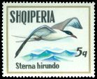 Cl: Common Tern (Sterna hirundo) SG 1587 (1973) 25