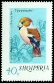 Cl: Hawfinch (Coccothraustes coccothraustes) <<Sqeptrashi>>  SG 1687 (1974) 85
