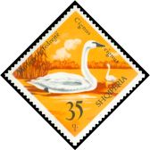 Cl: Trumpeter Swan (Cygnus buccinator) <<Mjelma qafedrejte>> (Out of range and no other stamp)  SG 1767 (1975) 85