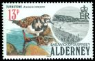 Cl: Ruddy Turnstone (Arenaria interpres) SG 14 (1984) 110