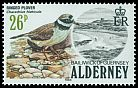 Cl: Common Ringed Plover (Charadrius hiaticula) SG 15 (1984) 250