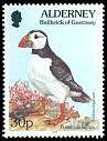 Cl: Atlantic Puffin (Fratercula arctica) SG 73 (1994) 60