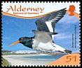 Cl: Eurasian Oystercatcher (Haematopus ostralegus)(Repeat for this country)  SG 365 (2009) 125