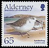 Cl: Sanderling (Calidris alba) SG 264 (2005) 300 [3/58] I have 2 spare [1/22]
