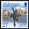 Cl: Great Skua (Stercorarius skua) SG 211 (2003) 55