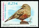 Cl: Alpine Accentor (Prunella collaris) <<Sordella>>  SG 300 (2002) 95 [1/15]