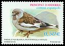 Cl: White-winged Snowfinch (Montifringilla nivalis) <<Pardal d'ala blanca>>  SG 301 (2002) 250