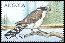 Cl: Laughing Falcon (Herpetotheres cachinnans)(Out of range)  SG 1547b6 (2000)