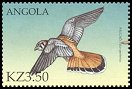 Cl: American Kestrel (Falco sparverius)(Out of range)  SG 1547a1 (2000)