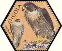Cl: Peregrine Falcon (Falco peregrinus)(Repeat for this country) (not catalogued)  (2004)  [3/54]