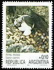 Cl: Cape Petrel (Daption capense) <<Petrel pintado>>  SG 1983 (1986) 150