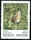 Cl: South American Snipe (Gallinago paraguaiae) <<Becasina>>  SG 1989 (1986) 150