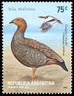 Cl: Ruddy-headed Goose (Chloephaga rubidiceps) <<Cauquen colorado>>  SG 2887 (2002) 275