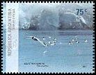 Cl: Cape Petrel (Daption capense)(Repeat for this country)  SG 3232 (2007) 160