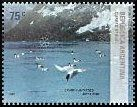Cl: Cape Petrel (Daption capense)(Repeat for this country)  SG 3233 (2007) 160