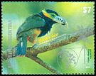 Cl: Spot-billed Toucanet (Selenidera maculirostris) <<Arasar&iacute; chico>>  new (2015)