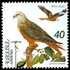 Cl: Red Kite (Milvus milvus) SG 309 (1995) 40