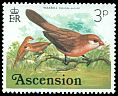 Cl: Common Waxbill (Estrilda astrild)(Introduced)  SG 201 (1976) 50