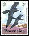 Cl: Black Noddy (Anous minutus) SG 202 (1976) 50