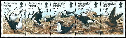 Cl: Sooty Tern (Sterna fuscata)(Repeat for this country)  SG 469-3 (1988) 800