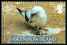 Cl: Masked Booby (Sula dactylatra)(Repeat for this country)  SG 984 (2007)  [8/16]