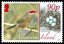 Cl: Common Waxbill (Estrilda astrild)(Repeat for this country)  SG 995 (2008)  [8/16]