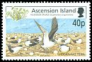 Cl: Sooty Tern (Sterna fuscata)(Repeat for this country)  SG 857 (2002) 200