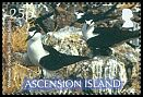 Cl: Sooty Tern (Sterna fuscata)(Repeat for this country)  SG 982 (2007)  [8/16]