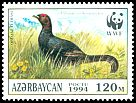 Cl: Caucasian Grouse (Tetrao mlokosiewiczi) <<QAFQAZ TETRASI>> (Endemic or near-endemic)  SG 181 (1994) 200
