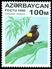 Cl: Yellow-shouldered Widowbird (Euplectes macrourus)(Out of range)  SG 326 (1996) 40