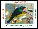 Cl: Ruby-cheeked Sunbird (Chalcoparia singalensis) new (2012)
