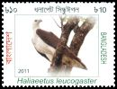 Cl: White-bellied Sea-Eagle (Haliaeetus leucogaster) SG 1073 (2011)