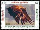 Cl: Grey-headed Fish-Eagle (Ichthyophaga ichthyaetus) SG 1095 (2012)