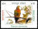 Cl: Orange-breasted Pigeon (Treron bicincta) SG 1080 (2011)