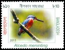 Cl: Blue-eared Kingfisher (Alcedo meninting) SG 1077 (2011)
