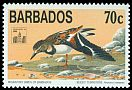 Cl: Ruddy Turnstone (Arenaria interpres) SG 1020 (1994) 150