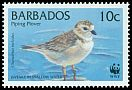 Cl: Piping Plover (Charadrius melodus) SG 1134 (1999) 20