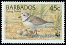 Cl: Piping Plover (Charadrius melodus)(Repeat for this country)  SG 1135 (1999) 55