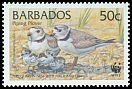 Cl: Piping Plover (Charadrius melodus)(Repeat for this country)  SG 1136 (1999) 55