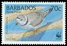 Cl: Piping Plover (Charadrius melodus)(Repeat for this country)  SG 1137 (1999) 65
