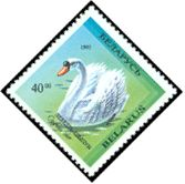 Cl: Mute Swan (Cygnus olor)(Repeat for this country)  SG 70 (1993) 30