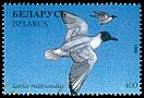 Cl: Black-headed Gull (Larus ridibundus) SG 201 (1996) 60