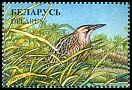 Cl: Great Bittern (Botaurus stellaris) SG 205 (1996) 60