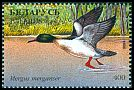 Cl: Common Merganser (Mergus merganser) SG 220 (1996) 60