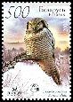 Cl: Northern Hawk Owl (Surnia ulula) SG 699 (2007) 55