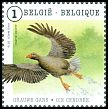 Cl: Greylag Goose (Anser anser) <<Grauwe Gans/Oie cendr&eacute;e>> (Repeat for this country)  SG 4626a (2015)